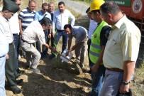 FİDAN DİKİM TÖRENİ - Bozyazı'da 15 Temmuz Şehitleri Anısına Hatıra Ormanı Oluşturuldu