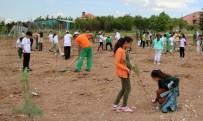 ÇANKAYA BELEDIYESI - Çankaya'nın Yeşil Alanları Artıyor