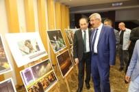 HITIT ÜNIVERSITESI - İHA'nın '15 Temmuz Destanı' Fotoğraf Sergisi Hitit Üniversitesinde Açıldı