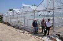 OTOMASYON - Topraksız Çilek Yetiştiriyorlar