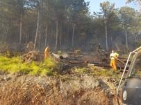 MADEN OCAKLARI - Bursa'da Orman Yangını Açıklaması 5 Hektar Kül Oldu