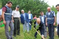 HASAN KESKIN - Düzce'de 15 Temmuz Demokrasi Şehitleri Adına Hatıra Ormanı Kuruldu