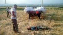 HALITPAŞA - Freni Boşalan Traktörün Altında Kaldı