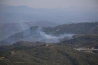 LAZKİYE - Hatay Sınırında Orman Yangını
