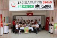 ORGAN NAKLİ - Kırkpınar'da 70 Kişi Organ Bağışında Bulundu
