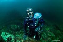 Resifler Balık Popülasyonunu Arttırdı