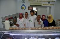 SÜT ÜRETİMİ - Bozdoğan'da Hastalıktan Ari Süt İşletmesi Açıldı