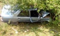 AHMET DEMIRCI - Kontrolden Çıkan Otomobil, Ağaca Çarptı Açıklaması 1 Yaralı
