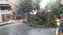 EYÜP BELEDİYESİ - Kuvvetli Yağış Sonrası Eyüp'te Hummalı Çalışma