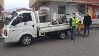MALTEPE BELEDİYESİ - Maltepe Belediyesi'nden 5 Bin 233 Sokak Hayvanına Yardım Eli