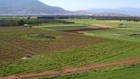 HİDROELEKTRİK - Milas'ta 16 Bin 410 Dekar Tarım Arazisi Suya Kavuşacak