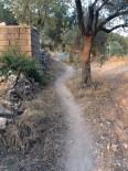 İBRAHİM ATEŞ - Milas'ta Patika Çilesi