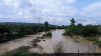 MıSıR - Sakarya'da Tarım Arazileri Sular Altında Kaldı