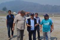 MANGAL KEYFİ - İzmir'deki Yangında Şu Ana Kadar 500 Hektarlık Alan Zarar Gördü