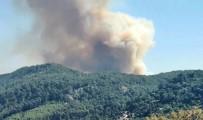 KıZıLAĞAÇ - Kaş'ta Orman Yangını Çıktı