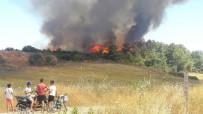 MAKİLİK ALAN - Manavgat'ta Makilik Yangını