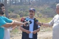 MANGAL KEYFİ - Orman Genel Müdüründen İzmir'deki Yangına İlişkin Açıklama