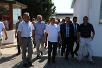 AHMET ÇıNAR - Zonguldak Valisi Çınar Ereğli'de Vatandaşlarla Tanıştı