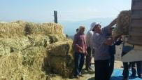 GÖKHAN KARAÇOBAN - Alaşehir Belediyesinden Hayvancılığa Yem Desteği