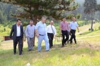 GÜZERGAH - Bozüyük Yaylalarında 'Agro Turizm' İçin Çalışmalar Başladı