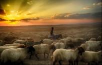 KISA FİLM YARIŞMASI - DİKA Fotoğraf Sergisi Yapılacaktır