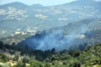 ORMAN YANGINI - Dursunbey'de Orman Yangını