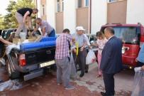 HAYVANCILIK - Göl Ve Göletlere 124 Bin Yavru Sazan Bırakıldı