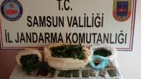 UYUŞTURUCU OPERASYONU - Samsun'da Uyuşturucu Operasyonları