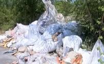 SARIYER - Sarıyer'de Hafriyat Rezaleti Hız Kesmeden Devam Ediyor