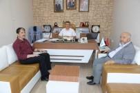 KAYALı - Başkan Yardımcısı Avcıoğlu'na Müftülerden Ziyaret