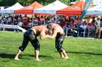 BEYLIKDÜZÜ BELEDIYESI - Beylikdüzü Belediyesi 2'Nci Geleneksel Yağlı Güreşleri 30 Temmuz'da