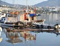 AHMET ERCAN - 'Deprem gündüz olsaydı denizden ceset toplardık'
