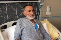 AŞIRI TERLEME - Kanser Sebebiyle Akciğerleri Alınan İki Hasta Sağlığına Kavuşuyor