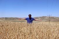 HASAN BOLAT - Buğdayda Korkulan Olmadı.