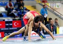 MEHTAP - Yıldızlarımız Avrupa Güreş Şampiyonası İçin Minderine Çıkıyor