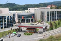 KARIN AĞRISI - Zonguldak'ta 29 Kişi Pastadan Zehirlendi