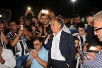 TRAFIK KAZASı - Beşiktaş Taraftarı Şampiyonluğu Milas'ta Kutladı