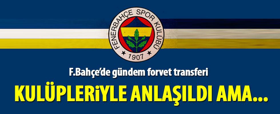 Fenerbahçe'de gündem forvet transferi