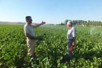TARıM - Malazgirtli Pancar Üreticileri Kotanın Kaldırılmasını İstiyor
