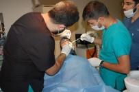 İMPLANT - Bitlis ADSM'de İmplant Tedavisine Başlandı