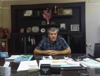 KARADENIZ - Öztürk Açıklaması 'Jersey Sığır Irkı Tükeniyor'