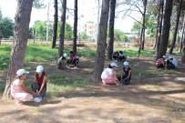TÜGVA'lı Öğrenciler Sokak Hayvanlarını Unutmadı