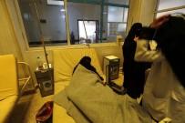 KOLERA - Yemen'de Bin 828 Kişi Koleradan Öldü