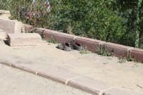 ADLİ TIP KURUMU - Başkent'te Göçük Altında Kalan İşçi Öldü