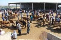 İSMAİL YILMAZ - Diyarbakır Hayvan Borsasında Durgunluk