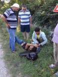 KIRAZLı - Kocaali'de Motosiklet Kazası Açıklaması 1 Yaralı