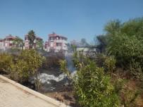 GOLF - Antalya'da Villa Tipi Evlerin Bulunduğu Tatil Bölgesinde Sazlık Yangını