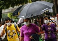 MEKSIKA - Myanmar'da Domuz Gribi Tehdidi