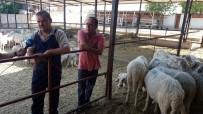 ANAYASA KOMİSYONU - Meclis Stresini Köyde Atıyor