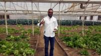 UGANDA - Afrika'da Tarım Ve Hayvancılık Türk Mühendislerden Öğreniliyor
